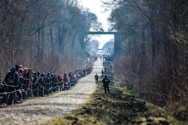 The Arenberg Forest represents a kind of sacred ground for most cycling fans – and we're no exception. (BrakeThrough Media)
